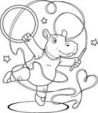 Hippo is engaged in gymnastics Royalty Free Stock Photography