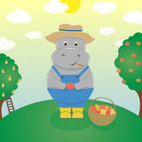 Hippo farmer Stock Photos