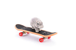 Hippo on the fingerboard Royalty Free Stock Image