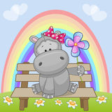Hippo with flower Stock Photography