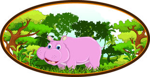 Hippo with forest background Royalty Free Stock Photos