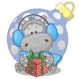 Hippo in a fur headphones. With gift Royalty Free Stock Image