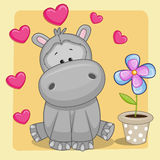 Hippo with heart and flower Royalty Free Stock Photography