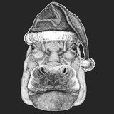 Hippo, Hippopotamus, behemoth, river-horse Christmas, new year celebration. Santa Claus winter hat. Xmas headdress. stock illustration