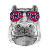 Hippo, Hippopotamus, behemoth, river-horse rt-shirt, tattoo, emb Stock Photography