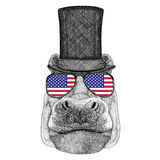 Hippo, Hippopotamus, behemoth, river-horse wearing cylinder top hat and glasses with usa flag United states flag Royalty Free Stock Photos