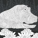 Hippo in black and white style Stock Photography