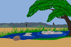 Hippo mother and baby in lake. Illustration of a Hippo mother and baby in a lake. Mountains in background and acaia tree hanging over the lake Stock Photography