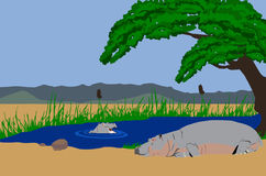 Hippo mother and baby in lake. Illustration of a Hippo mother lying on the banks of a lake and baby hippo in the lake. Mountains in background and acaia tree Stock Images