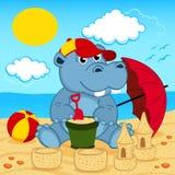 Hippo op strand Stock Afbeelding
