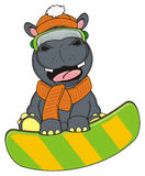 Hippo riding on the snowboard. Smiling hippo in winter clothers and mask jumping on the snowboard Stock Photos