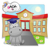 Hippo and school Stock Image