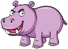 Hippo with serious face. Illustration Royalty Free Stock Image