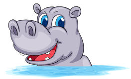 Hippo swimming in water. Illustration Royalty Free Stock Image