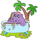 Hippo taking mud bath Stock Images