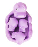 Hippo toy. Isolated on white background royalty free stock image