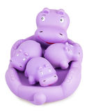 Hippo toy. Isolated on white background stock images