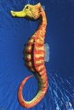 Hippocampe Image stock