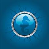 hippocampe Photographie stock libre de droits