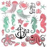 Hippocampes avec les méduses, le poulpe, le crabe et autre illustration libre de droits