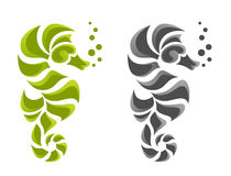Hippocampus Arkivfoto