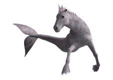 Hippocampus Mermaid's Horse. 3D digital render of Hippocampus (Mermaid's Horse) isolated on white background Royalty Free Stock Photos