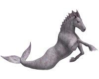 Hippocampus Mermaid's Horse. 3D digital render of Hippocampus (Mermaid's Horse) isolated on white background Royalty Free Stock Image