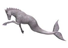 Hippocampus Mermaid's Horse. 3D digital render of Hippocampus (Mermaid's Horse) isolated on white background Stock Photo