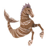 Hippocampus Mermaid's Horse Stock Images