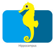 Hippocampus swimming flat icon design Royalty Free Stock Photography