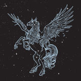 Hippogriff or Hippogryph supernatural beast. Sketch on a nightsky background Royalty Free Stock Images