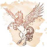 Hippogriff lub Hippogryph bestii nadnaturalny nakreślenie na grunge tle Fotografia Stock