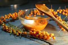 Fresh grinded sea buckthorn berries. Royalty Free Stock Photos