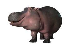 hippopotame du rendu 3D sur le blanc Images stock