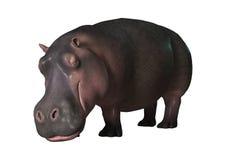 hippopotame du rendu 3D sur le blanc Photo stock