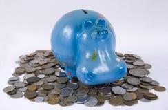 hippopotamus банка Стоковые Фото
