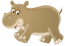 Hippopotamus royalty free illustration