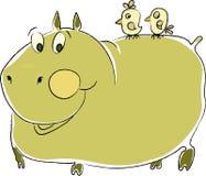 Hippopotamus Imagem de Stock