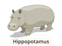 Hippopotamus african savannah animal cartoon Stock Photo