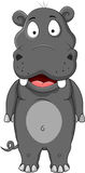 Hippopotamus cartoon Stock Photos