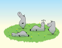 Hippopotamus funny caricature cartoon behemoth. The Nice hippopotamuses on glade with flowers and herb walk repose sniff the flower and dream Royalty Free Stock Image