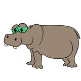 Hippopotamus Cartoon Vector Illustration Stock Images