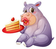 Hippopotamus and pastry Stock Image