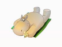 Hippopotamus pique-niquant Photos libres de droits