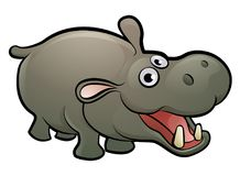 Hippo Safari Animals Cartoon Character. A hippopotamus safari animals cartoon character Royalty Free Stock Photography