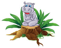 A hippopotamus sitting above the wood Royalty Free Stock Image