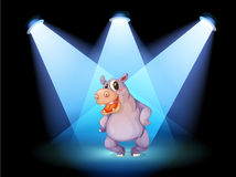 A hippopotamus standing at the stage with spotlights Stock Image