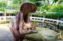 Hippopotamus in the zoo. At Thailand Stock Photos