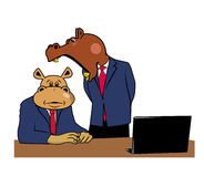 Hippos in office 3. Two hippos in office at a desk with a laptop Royalty Free Stock Photos