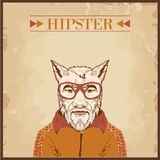 hipster animal charcter Royalty Free Stock Photography